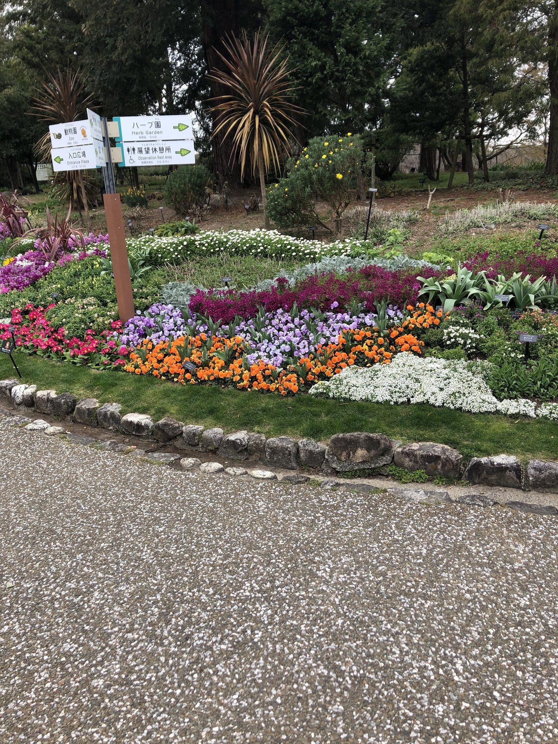 ATU 福岡 警備 動植物園 花壇