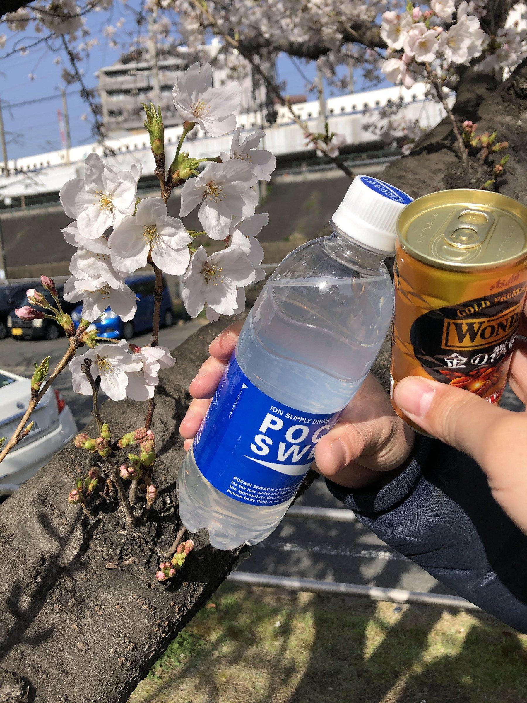 ATU 福岡 警備 サクラ 乾杯